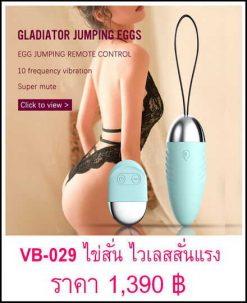 vibrator-VB-029.1